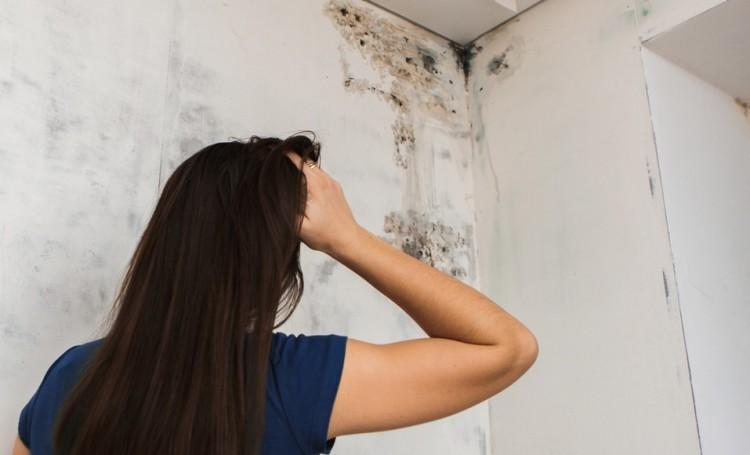 Réduire le problème d'humidité dans une maison